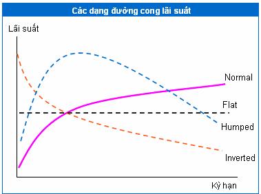 Các dạng đường cong lãi suất